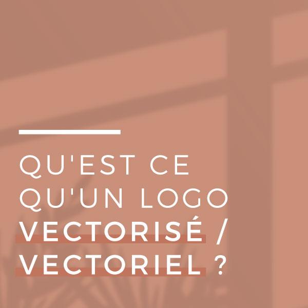 Qu'est-ce-qu'un-logo-vectoriel---vectoriel